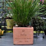 Plant Pot Hi Res (5)